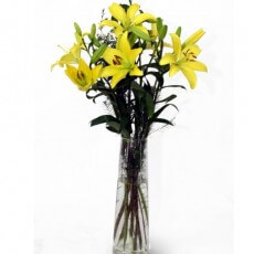 Image of Yellow Lilies