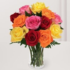 Image of RAINBOW Roses