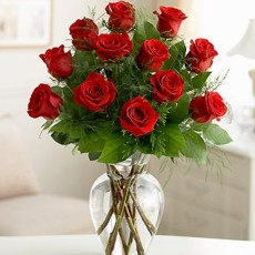 Image of Dozen Red Imported Roses
