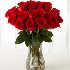 Image of 18 Red Roses