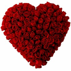 Image of 100 Roses in heart