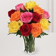 Image of Roses assorted [imported]